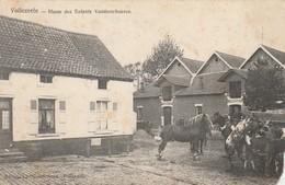 Vollezeele , Haras Des Enfants Vanderschueren,(Paard,Cheval,bovin,vache )ATTENTION MANQUE PETIT MORCEAU COIN DROIT BAS - Galmaarden