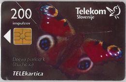 PHONE CARD  SLOVENIA (E16.23.7 - Other - Europe