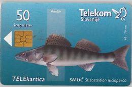 PHONE CARD  SLOVENIA (E16.25.5 - Schede Telefoniche