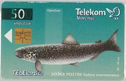 PHONE CARD  SLOVENIA (E16.25.6 - Schede Telefoniche