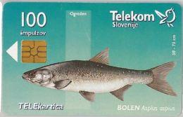 PHONE CARD  SLOVENIA (E16.25.7 - Other - Europe