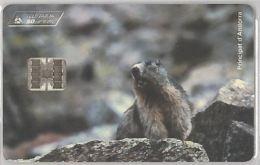 PHONE CARD  ANDORRA (E18.1.5 - Andorra