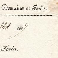 Lettre Dijon 1817 Côte D'Or Le Conservateur Des Forêts Direction Générale Domaines Et Forêts Wassy Haute Marne - Marcophilie (Lettres)