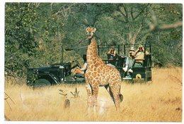 BOTSWANA - SAFARI WITH KER DOWNEY SELBY / THEMATIC STAMPS-ANIMALS - Botswana