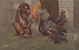 MONKEY/TURKEY POSTCARD. CHRISTMAS CARD - Monkeys