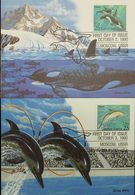 L) 1990 USA, COMMON DOLPHIN, KILLER WHALE, AQUATIC ANIMALS, ICE, FAUNA, NATURE, MAXIMUM CARD - Maximumkarten (MC)