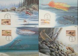 L) 1991 USA, FISHES, MUDDLER MINNOW, LEFTY'S DECEIVER, ROYAL WULFT, MARINE SPECIES, NATURE,  MAXIMUM CARD - Maximumkarten (MC)