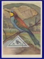 Hongrie, Carte Maximum, Yvert 127 PA, Oisseau - Maximum Cards & Covers