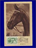 Hongrie, Carte Maximum, Yvert 1174, Palefrenier - Maximum Cards & Covers