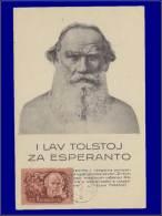 Hongrie, Carte Maximum, Yvert 88 PA, Tolsoï - Maximum Cards & Covers