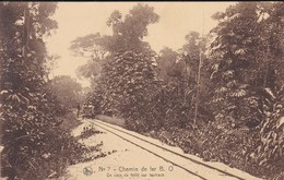 CONGO----RARE---CHEMIN DE FER B. O.--un Coin De Forêt Sur Le Tracé--voir 2 Scans - Pointe-Noire