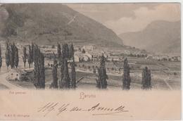 PYRENEES ATLANTIQUES - LARUM - Vue Générale  ( - Carte Pionnière / Timbre à Date De 1902 ) - Laruns