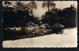 NICE Sous La Neige - CARTE PHOTO Grotte Du Jardin Albert 1er - Recto Verso-   Paypal Sans Frais - Parks, Gärten