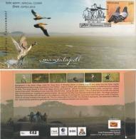 India  2014  Cranes  Birds  Mangalajodi Marshlands  Cover  #   10286   D  Inde Indien - Cranes And Other Gruiformes