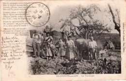 VILLENEUVE SUR LOT LES VENDANGES PRECURSEUR 1904 - Villeneuve Sur Lot