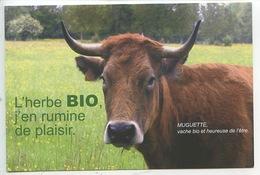 Agriculture Biologique élevage Muguette Vache Bio & Heureuse De L'être L'herbe Bio J'en Rumine De Plaisir - Breeding
