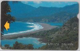 PHONE CARD- TURCHIA (E24.13.6 - Turkey