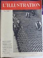 L'Illustration N° 5041 14 Octobre 1939 - Journaux - Quotidiens