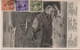 Carte Postale Avec Timbres Postes Quadricolore Pour Saigon (Cochinchine)  Rare Destination - Egypt