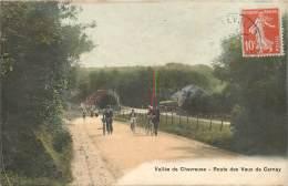 VALLEE DE CHEVREUSE ROUTE DES VAUX DE CERNAY - Chevreuse