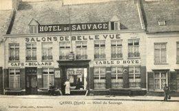MONT-CASSEL - Hôtel Du Sauvage - Des Salons De Belle-vue On Admire Un Très Beau Panorama (animée) - Cassel