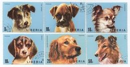 Liberia : Série De 6 Timbres Au Thème De Chien - Hunde