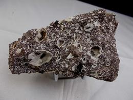 CHABASITE DANS TUF VOLCANIQUE  9,5 X 4, Cm CIRQUE DES BOUTIERES - Minerals