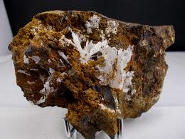ARAGONITE EN GERBES SUR BASALTE 11, X 6,5 Cm CUREBOURSE - Mineralien