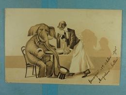 Eléphant Humanisé - Éléphants