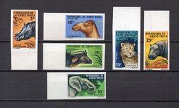 HAUTE VOLTA  N° 148 à 153  NON DENTELES  NEUFS SANS CHARNIERE  COTE  ? €  ELEPHANT  ANIMAUX - Upper Volta (1958-1984)