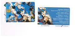 LETTONIA (LATVIA) -        1998 SPRING FLOWERS             -  USED - RIF. 10596 - Latvia