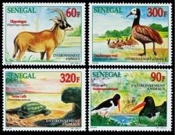 (038) Senegal  Animals / Animaux / Tiere / Dieren  1999   ** / Mnh  Michel 1811-14 - Senegal (1960-...)
