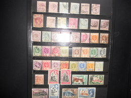 Collection , Ceylan , Sri Lanka , Lot De 240 Timbres Obliteres - Stamps