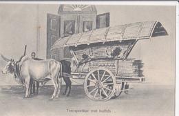 Transportkar Met Buffels/ Réf:fm431 - Indonésie