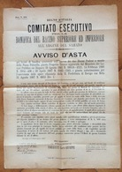 ROVIGO 5/9/1887  MANIFESTO ASTA  BONIFICA BACINO SUPERIORE ED INFERIORE ARGINE DEL SABATO PRESIDENTE  CONTE FIORAVANTI - Manifesti