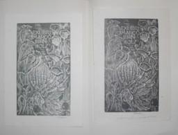 Lot De 2 Ex-libris Modernes XXème Illustrés -  Allemagne - Fleurs - Marco BIRNHOLZ - Bookplates