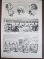 Gravure 1870 Exposition  Canine Concours De Chiens Dogs Hunte  Champs-elysées  Chenil De Fosse - Sin Clasificación
