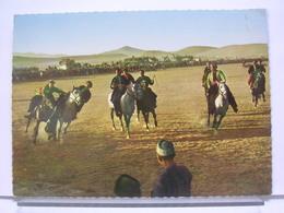 AFGHANISTAN - BUSKASCHI  - ANIMEE - CHEVAUX - Afghanistan