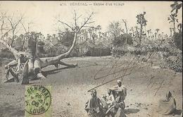 Sénégal Entrée D'  Un Village   CPA 1908 - Senegal