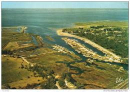 D33  LA HUME   Port De La Hume, Vue Vers Le Bassin   ..... - Gujan-Mestras