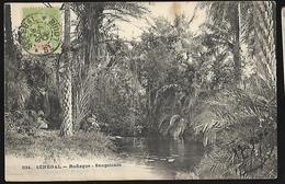 Sénégal  Rufisque  Sangalcam   CPA 1900 - Senegal