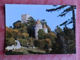 Dep 71 , Cpm  Chateau De BRANCION , 71 , Donjon Et Tour De Beaufort   (12.955) - Altri Comuni