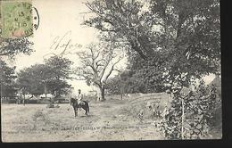 Sénégal   Diahaw  Résidence  Du  Roi Du Sine CPA  1906 - Senegal