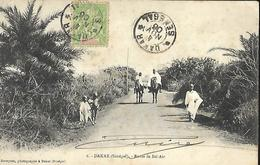 Sénégal     Dakar   Route De Bel - Air   CPA 1906 - Senegal