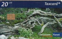 SWITZERLAND - Pine Forest/Gnarled, Chip Siemens 35, 06/03, Used - Switzerland