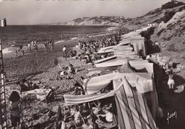 BIDART: La Plage Et La Côte Basque - Bidart
