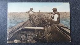 CPA 85 Vendée TAMISAGE De La SARDINE Les Sables D'Olonne Animée De Pêcheurs Vieux Métier - Sables D'Olonne