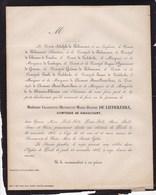PERCK PERK Château Charlotte De LIEDEKERKE Comtesse De RIBAUCOURT 23 Ans 1866 Famille De THIENNES De LOMBIZE - Obituary Notices