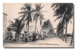 SENEGAL  SAINT LOUIS Avenue Des Cocotiers - Précurseur -Neuve Excellent état    (scan Recto-verso) FRCR90931 - Senegal