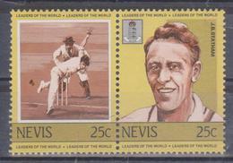 Nevis - Azione Di Gioco - Cricket